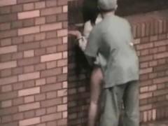 outdoor-sex-couples-witness
